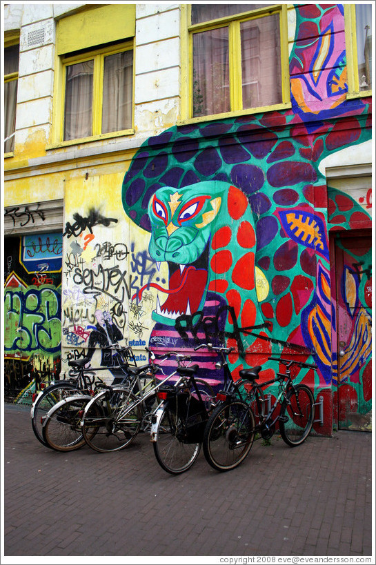 Snake painting on building, with bikes in front.  Spuistraat, Centrum district.