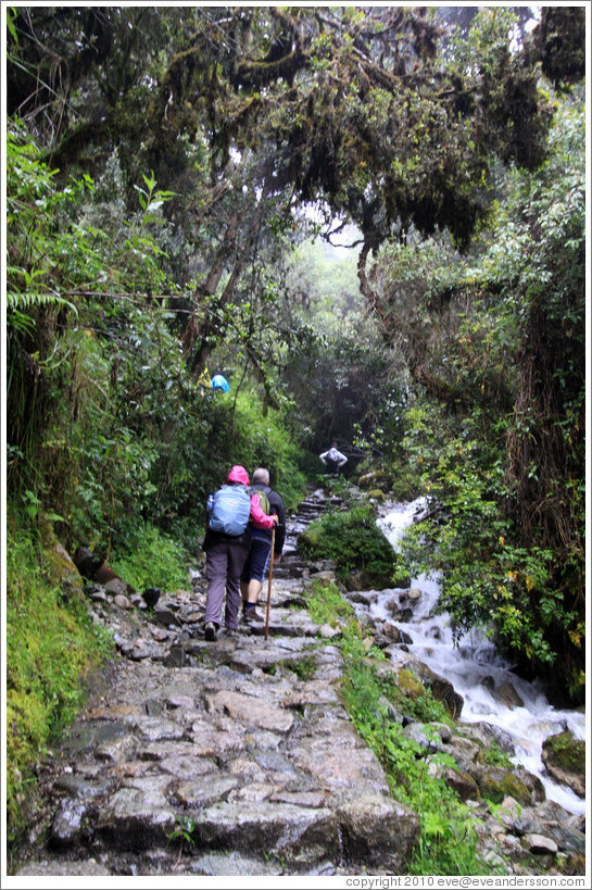 Hikers on the Inca Trail.