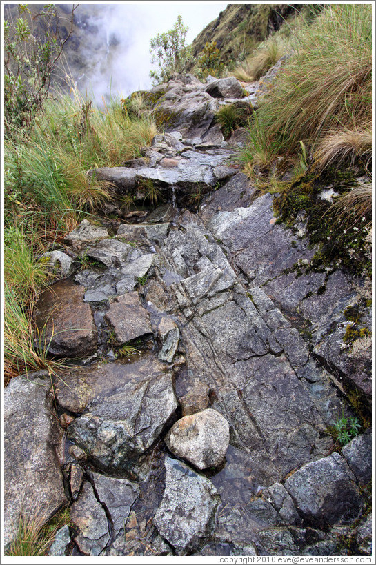 The Inca Trail, not a stream.