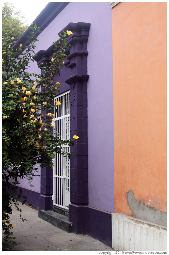 Purple and peach buildings, with yellow flowers. Calle Domeyer, Barranco neighborhood.