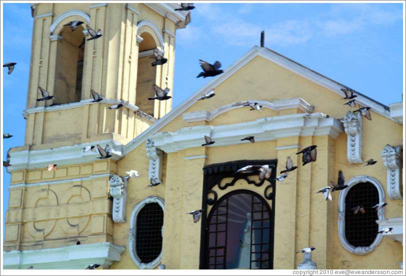 Pigeons flying in front of Iglesia de San Francisco, Historic Center of Lima.