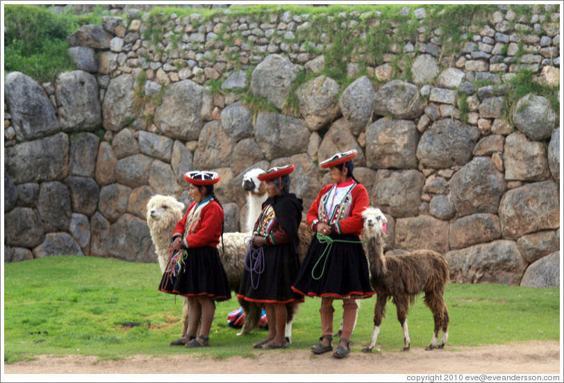 Three women with alpacas, Sacsayhuam?