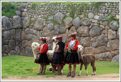 Three women with alpacas, Sacsayhuam�n.