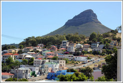 Bo-Kaap neighborhood in front of Lion's Head.
