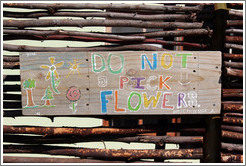 Do Not Pick Flowers sign, Dawes Street, Bo-Kaap.