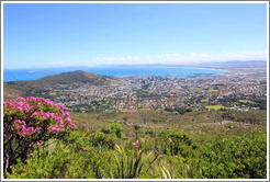 Cape Town viewed from Table Mountain.