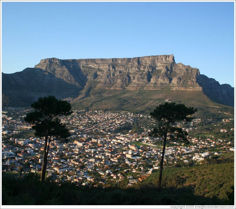 cape town table mountain location