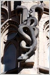 Serpent.  La Sagrada Fam�lia.
