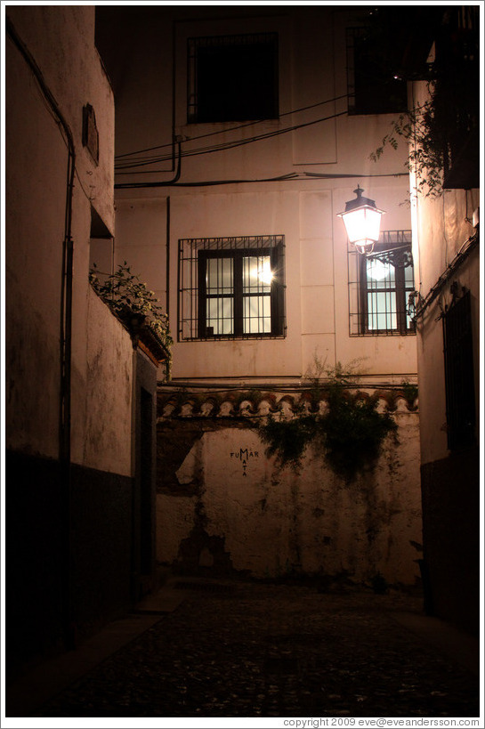 Calle del Pianista Garc?Carrillo at night.  Albaic?