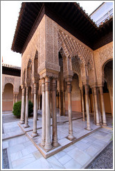 Arches.  Nasrid Palace, Alhambra.