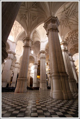 Columns of the Granada Cathedral.