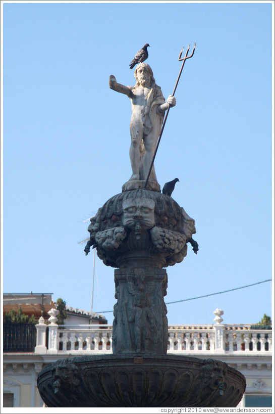 Neptune with a pigeon on his head. Fuente de los Gigantes (Fountain of the Giants). Plaza de Bib-Rambla, city center.