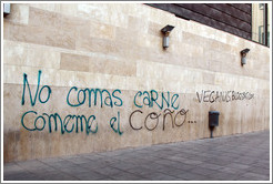 "Graffiti promoting vegetarianism, reading ""Don't eat meat. Eat my [female body part]."" Plaza de San Agust? city center."