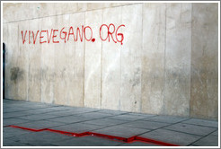 Graffiti promoting a vegan web site, vivevegano.org. Plaza de San Agust? city center.