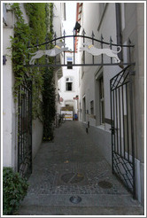 Gate with dogs.  Narrow street off 	