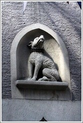 Dog with spiky collar.  R?den Restaurant.  Altstadt (Old Town).