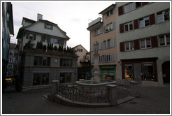 Fountain on Spiegelgasse.  Altstadt (Old Town).