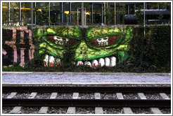 Graffiti by the train track.  Two skulls within a skull.