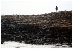Man standing on Giant's Causeway.