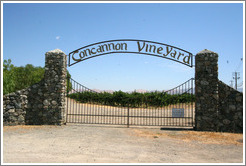 Concannon Vineyard.