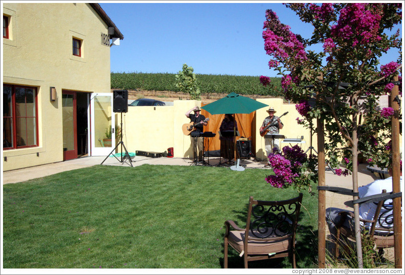 Band performing in garden.  Deer Ridge Vineyards.