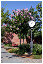 Clock.  Downtown Livermore.