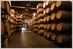 Barrels.  Wente Vineyards Estate Winery.