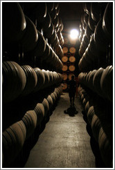 Man among barrels.  Wente Vineyards Estate Winery.