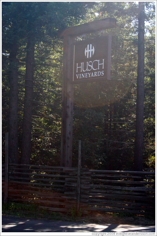 Husch Vineyards.