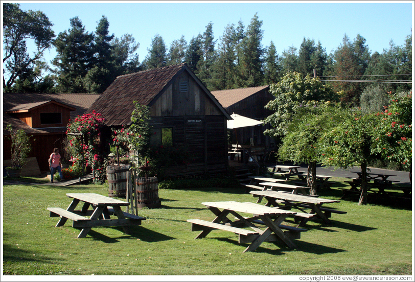 Tasting room and picnic tables.  Husch Vineyards.