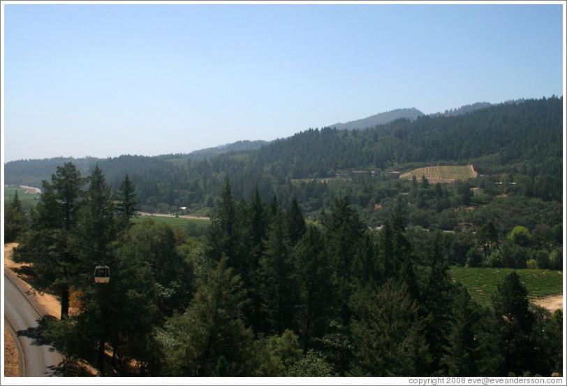 View from aerial tram.  Sterling Vineyards.