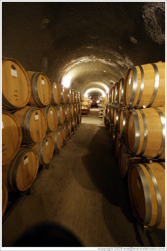 Barrels in cave.  Eberle Winery.