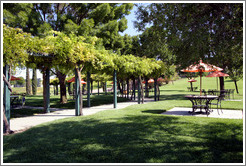 Picnic area.  EOS Estate Winery.