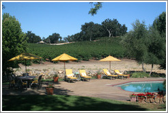 Pool at JUST Inn surrounded by vineyard.  Justin Vineyards and Winery.