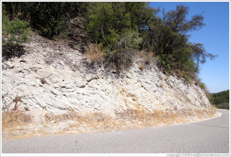 Calcareous soil typical of Western Paso Robles.