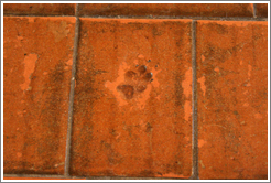 Animal footprint in floor tile of church (tiles were dried outside).  San Juan Bautista Mission.