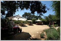 Picnic area.  Sunstone Vineyards and Winery.
