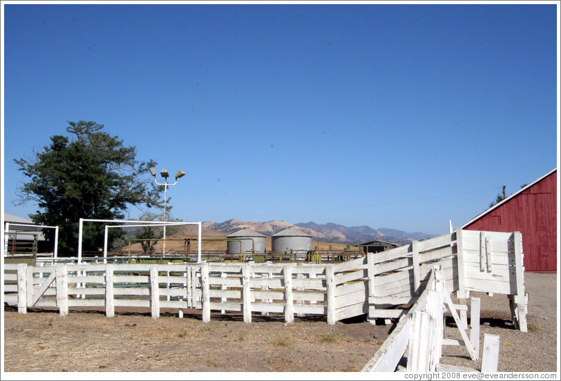 Ranch near Tres Hermanas Winery.