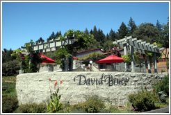 Picnic area.  David Bruce Winery.