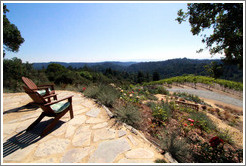 Chairs facing the view, picnic area, Vine Hill Winery.