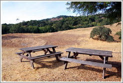 Picnic tables, Alexander Valley Vineyards.