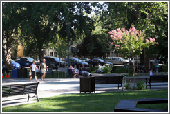 Plaza Park.  Downtown Healdsburg.