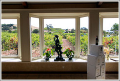 Tasting room, looking out onto the vineyard, Limerick Lane Cellars.