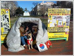 Thomas has been campaigning for peace near the White House since 1981.  More info: <a target=new href=http://prop1.org>prop1.org</a>.