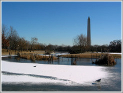 Washington Monument.