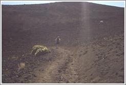 Beth walking down Haleakala.