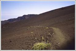Jin walking.  Haleakala.