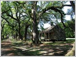 Evergreen Plantation.  Slave quarters.