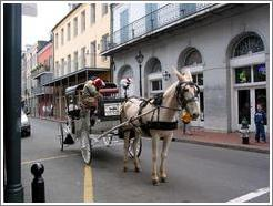 French Quarter. Mule.