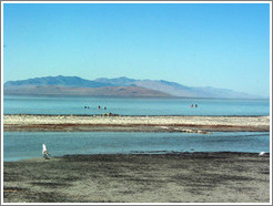 Antelope Island beach.  Swimmers and flies.